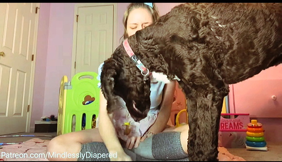 ABDL+Mindlessly Diapered+犬