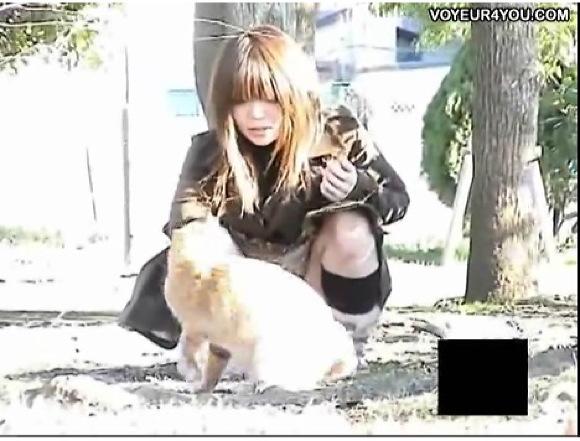 【パンチラ】なかなかの可愛い女子大生と野良猫です!微笑ましい光景ですな!