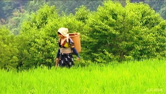 【ヘンリー塚本】畑を歩いていた農家の奥さまがデカチン男に襲われます『ヘンリー塚本の男が腑抜けになる色っぽい嫁のアソコ』【沢村ゆうみ 内村りな 矢沢えりな】