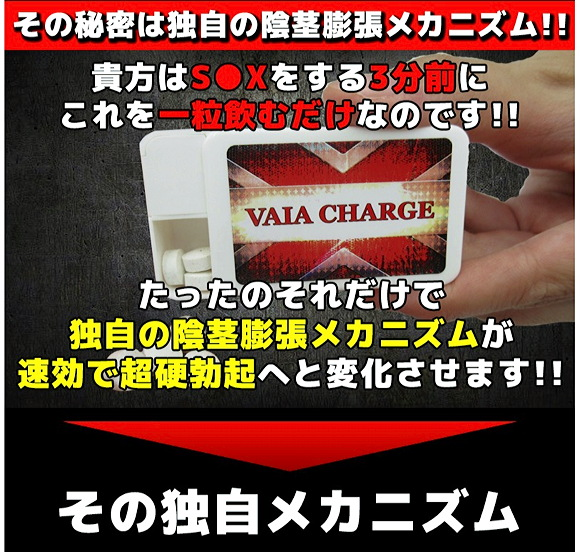VAIA CHARGE(ヴァイアチャージ)06