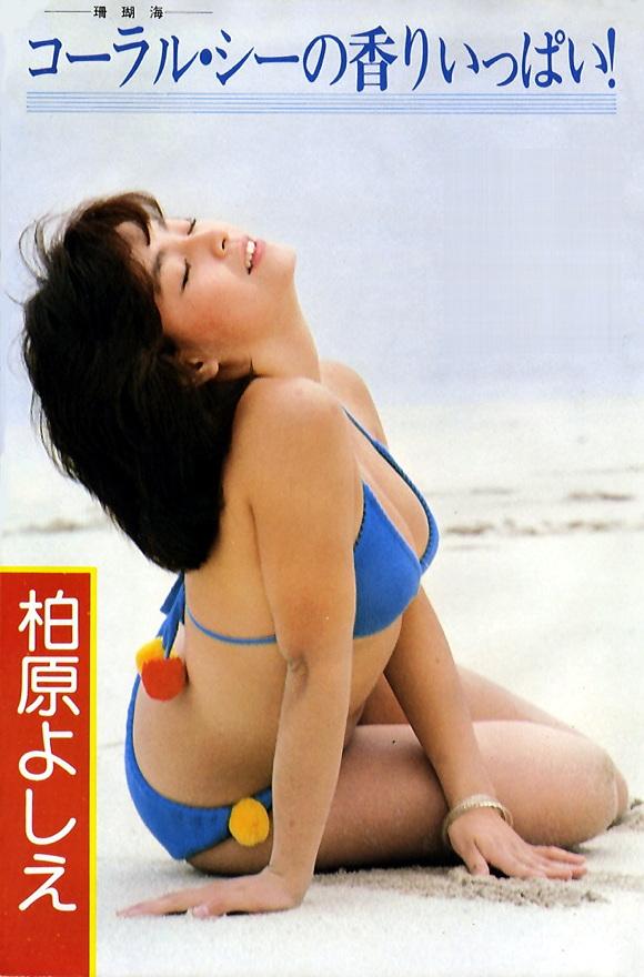 柏原芳恵水着03