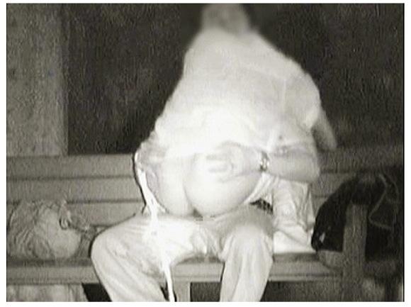 【青姦】『バッキー零号機さん「深夜の青姦調査報告書」VOL.1』他【画像40枚】